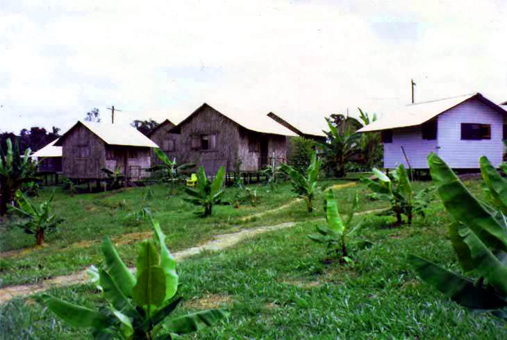 Cottages in Jonestown