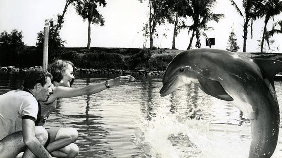Richard O'Barry and dolphin Kathy
