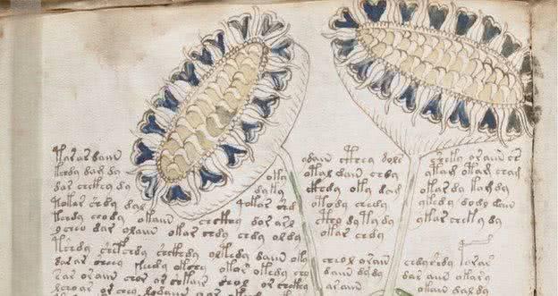The Voynich Manuscript.